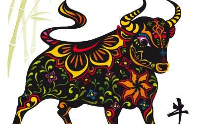 Happy Ox New Year: Steady & Strong Here I Come!